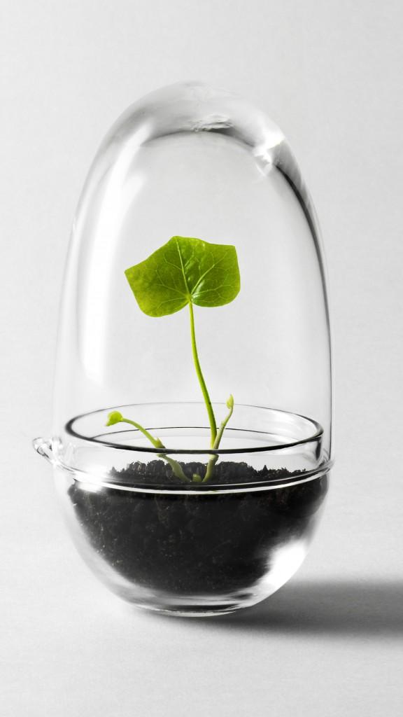 ARCHITETTURAXTUTTI.COM_Grow Greenhouse