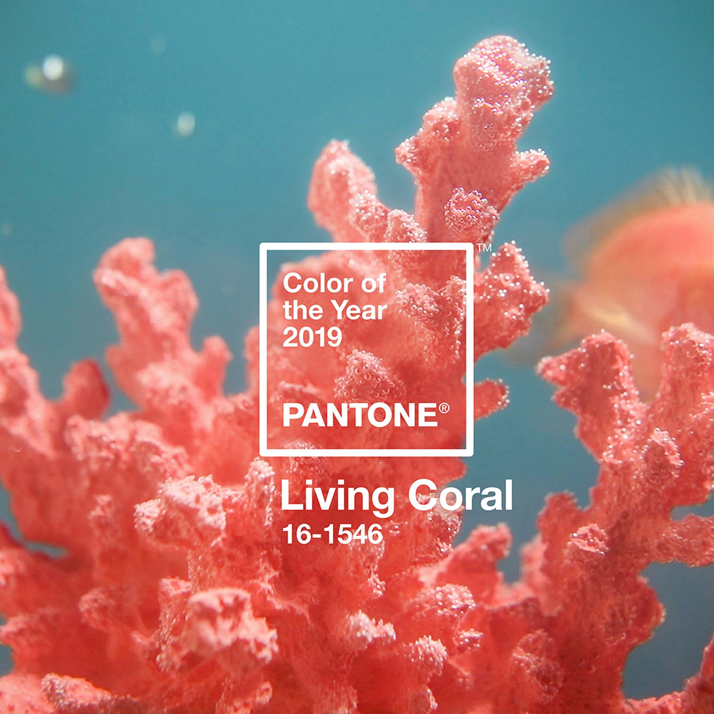 Coral colour 2019